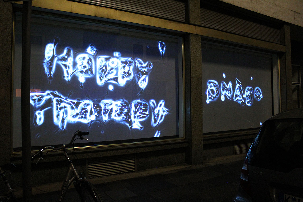 CP_window-projection